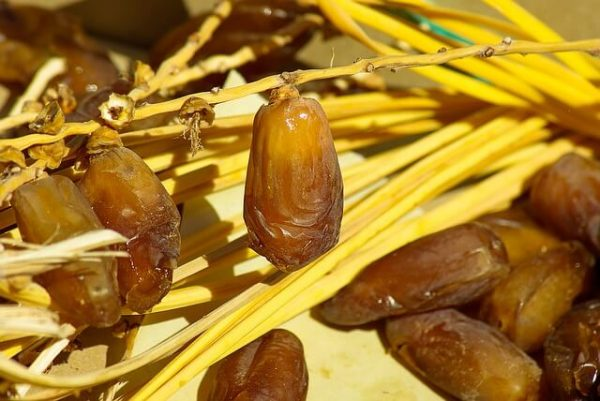 Health benefits of Dates Fruits or Dates fruit